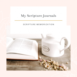 My Scripture Journals